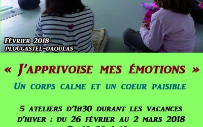 Hiver 2018 : Stage Enfants «J'apprivoise mes émotions»